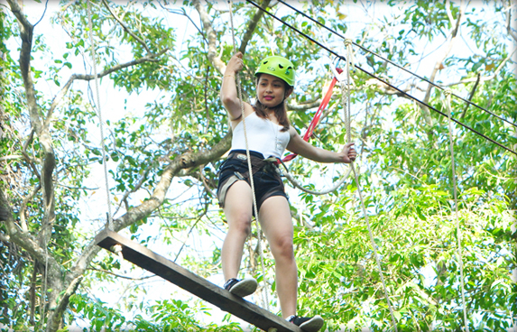 Tree Top Rope Course